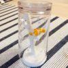 ニモが海中を泳ぐはみがきコップスタンドが超可愛い!【Hashy】CUP STANDを購入しました