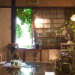 神楽坂でジブリ気分が味わえる!【ムギマル2】で猫と饅頭を楽しむ